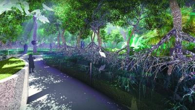 世园会将现海边红树林