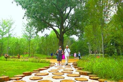 东城首个城市森林公园建成开放